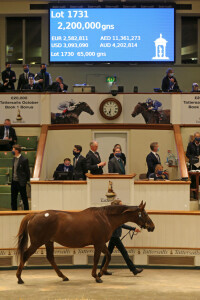 d1051br - BrightSign players are powering a new installation at Tattersalls auction houses_image 3_sml